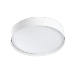 LED Svetilka, Stropna, Nadgradna, VUK, 40W, SMD, 2700K, 3000 Lm, IP44v1