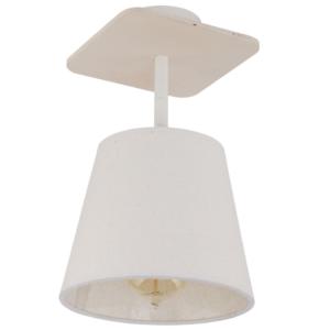 LED Notranja stropna, AWINION white, 40W, 1xE27, IP20